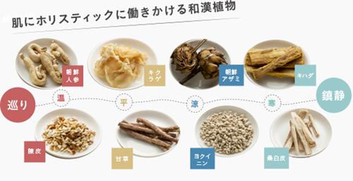HANAseibun1.jpg