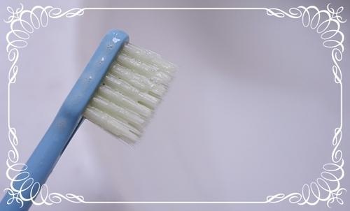 PD歯ブラシ泡.jpg
