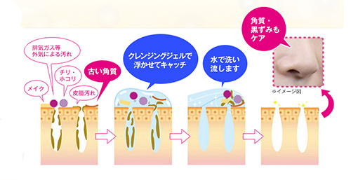 cellula電解水であらう図解
